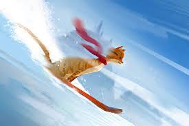 Snowboardingcat