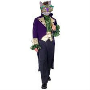 My Mardi Gras Costume for Cat Scouts!!