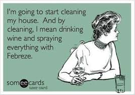 Mom's thoughts on cleaning.......