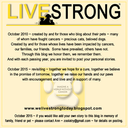 LIVESTRONGBADGE