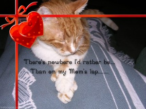 To my favorite Valentine in the world - My Mom!