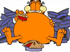 garfieldfood