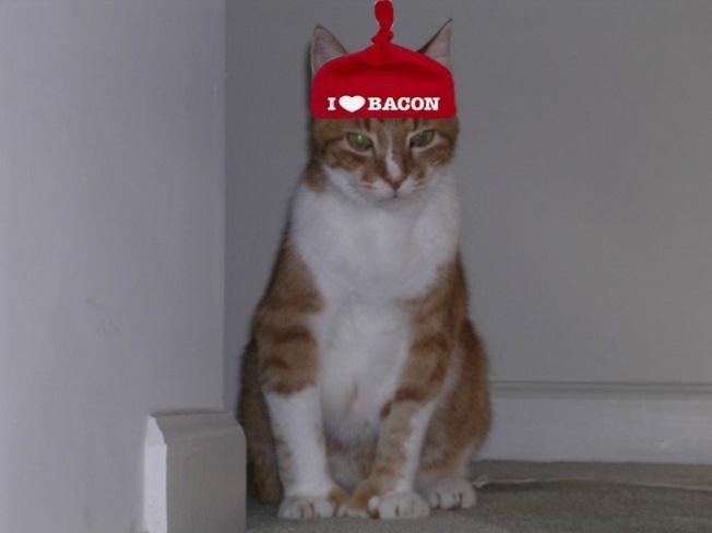 I think I'm rockin' this hat!