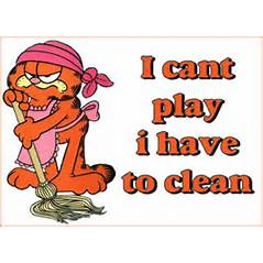 CLEANINGGARFIELD