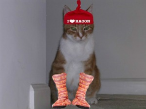 BACONSOCKSSAM