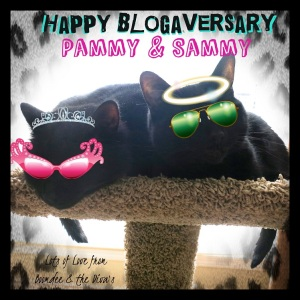 From Boomdeeadda and her two Diva kitties!