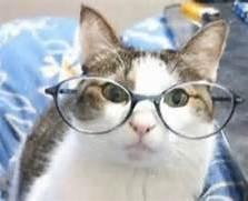 Clean glasses here!