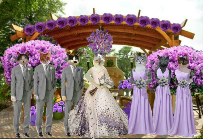 WEDDINGPARTYATPERGOLAFINAL