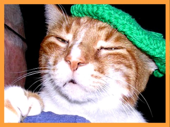 """Oui Mon Amis, I did zee """"R"""" today and next week we shall do zee """"S"""" together, oui???"""
