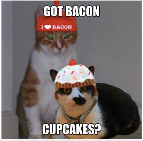 My Pal Mau in his cupcake hat and me in my bacon hat!!