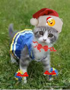 Jingle Bells Garbage smells Santa better be good Like he knows he should Bring me some stuff Don't make me get rough You'd better make me happy Santa make it snappy! I worked hard all year Now Christmas is here Don't disappoint Or I'll visit that North Pole joint I'll tell Mrs. Claus That you've got grabby paws!!