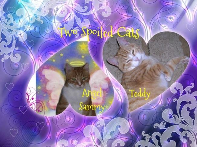twospoiledcatsbadge