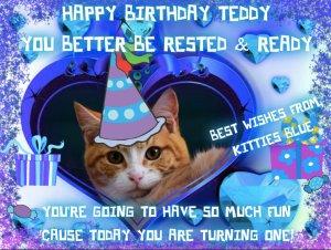 From Kitties Blue!